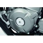 Suzuki Inazuma 250 chrome crankcase plug
