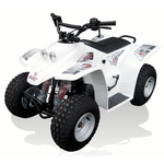 Quadzilla Buzz 50 Junior Off Road Quad
