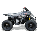 Quadzilla R100 Off Road Junior Quad Black