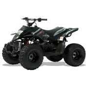 Quadzilla Junior Kids Off Road Quads Two Wheel Centre