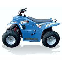 Quadzilla Buzz 50 Junior Off Road Quad Blue